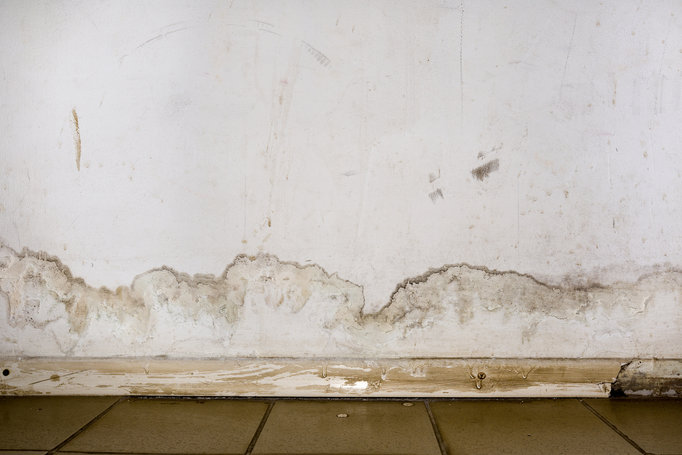 5 Common Challenges in Household and Commercial Remediation